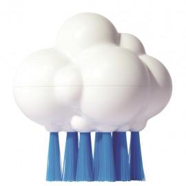 Cepillo Pluï cloudy, Moluk