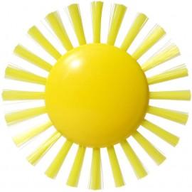 Cepillo Pluï sunny, Moluk