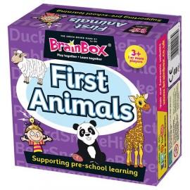 Juego de memoria - Primeros animales